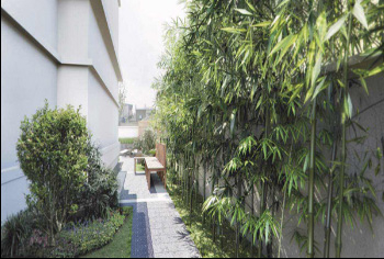 天津私家花园设计