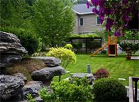 天津私人庭院景观设计中常用植物有什么
