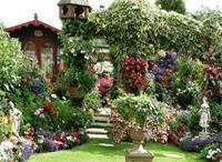 天津花园设计有什么特点