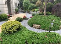 天津私家花园设计常用材料有什么