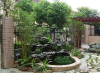 天津私人庭院绿化技巧有什么