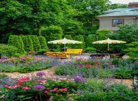 天津私家花园有哪些植物新需求