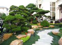 天津别墅景观设计如何提升品质