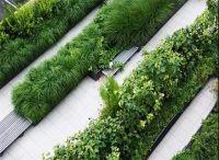天津花园景观边界处理的方式