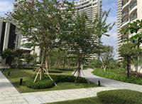 天津园林景观小品中花坛的样式分类