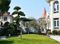 打造别墅花园设计园林景象的秘诀